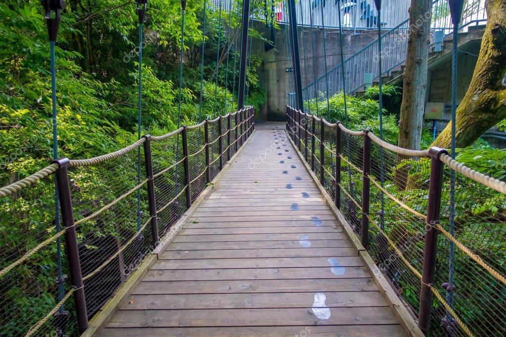 HAKONE, JAPAN - JULY 02, 2017: Beautiful bridge at Hakone open air museum in Japan