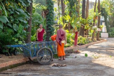 CHIANG RAI, THAILAND - FEBRUARY 01, 2018: Outdoor view of unidentified monks in the road cleaning the street close to a trycicle at Chiang Mai, Thailand