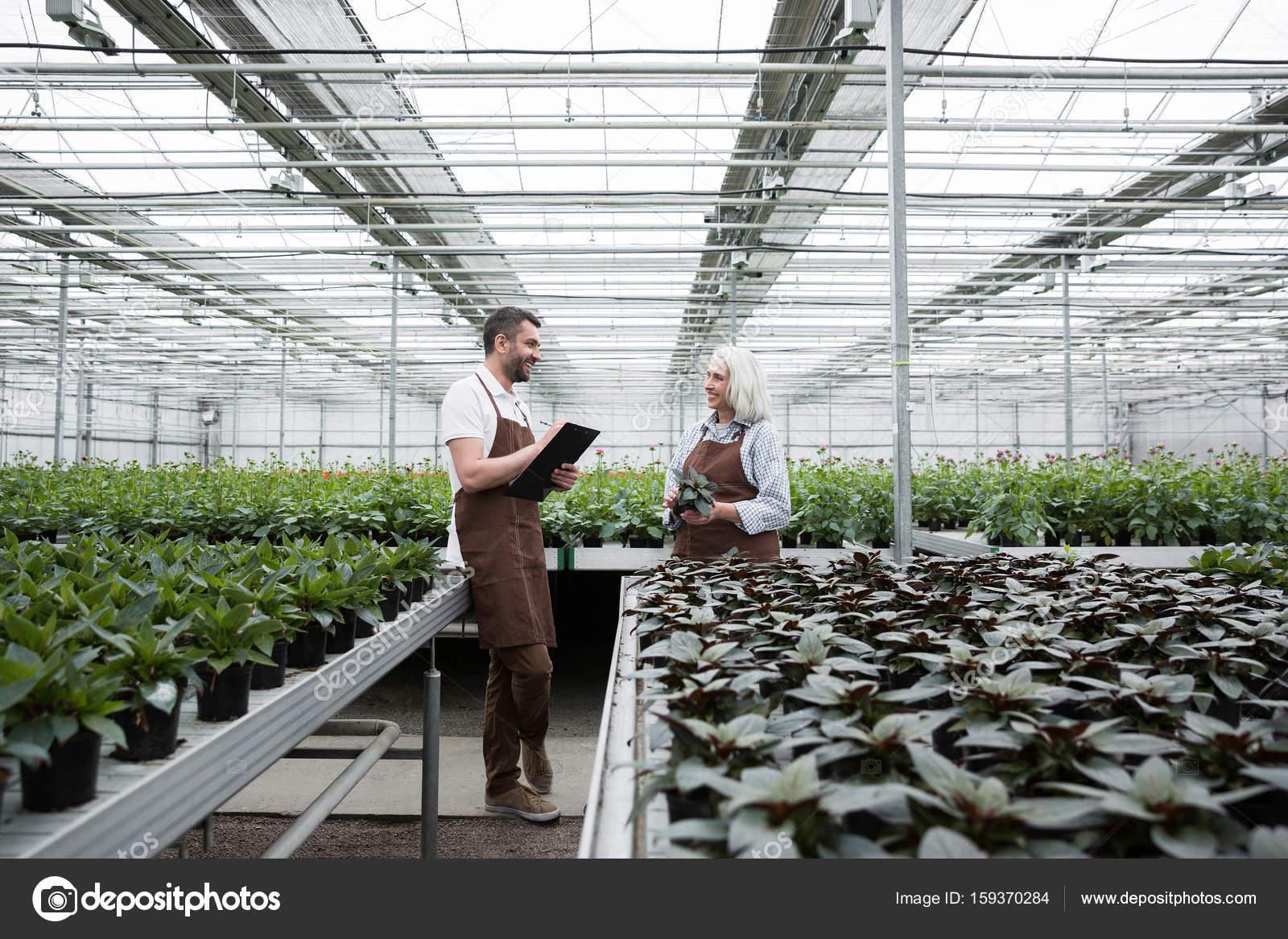 Glucklicher Mann Stehend Im Gewachshaus In Der Nahe Von Pflanzen