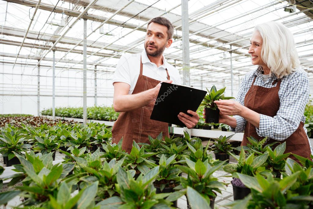 Cheerful woman showing plant to her colleague with folder