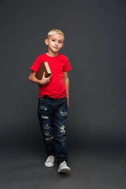 Image of concentrated little boy child standing isolated over grey background. Looking camera holding book.