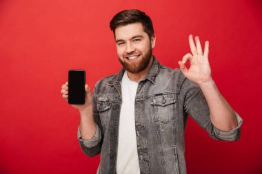 Image of unshaved caucasian guy showing cell phone on camera and gesturing OK sign with fingers isolated over red background stock vector