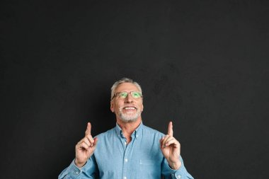 Portrait of middle aged man 50s with grey hair and beard in shirt smiling and pointing index fingers upward on copyspace isolated over black background stock vector