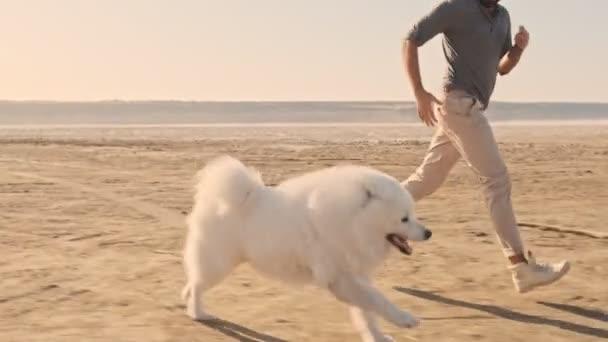 Ein junges Paar läuft im Sommer mit einem Hund über den See