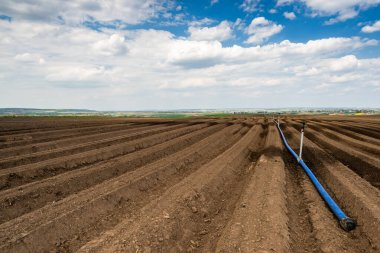 Watering System in Agriculture Industry. Drough on Plantation,Clima Change Problem.