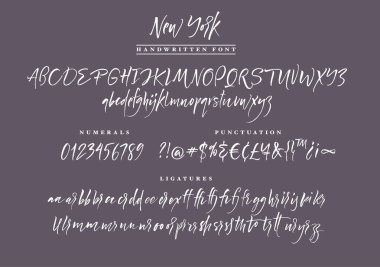 New York Handwritten script font. Brush font. Uppercase, lowercase, numbers, punctuation and a lot of ligatures