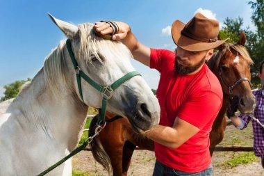 Man grooming horse
