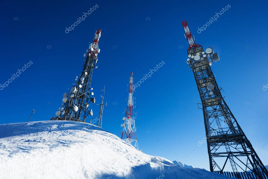 Tree telecommunication towers