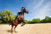 Springpferd und Reiterin üben auf Rennbahn