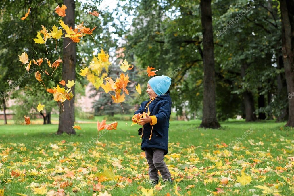 Boy throwing autumn leaves up in the park.