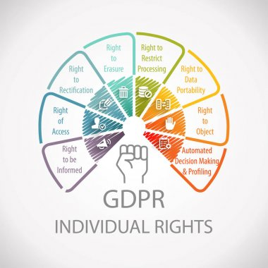 GDPR General Data Protection Regulation Individual Rights Wheel Infographic