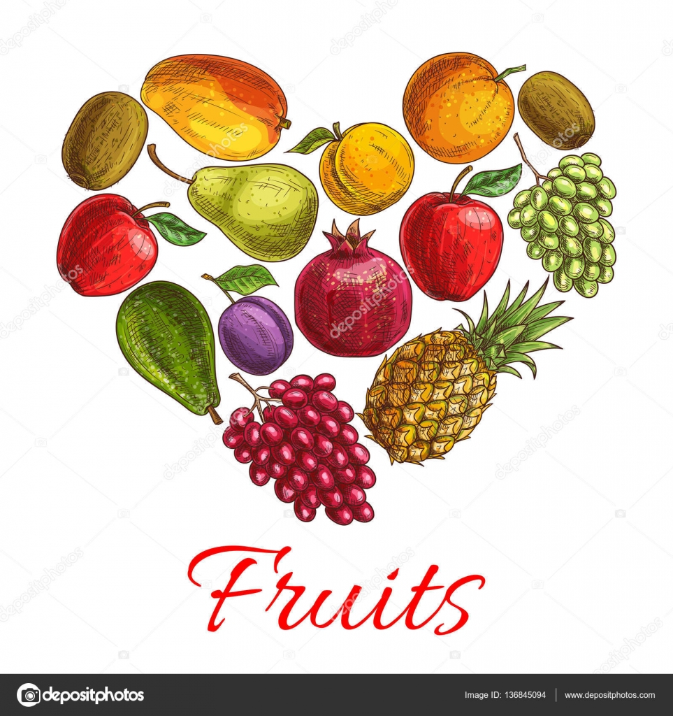 Fruit heart sketch poster for drinks food design stock vector fruit heart sketch poster love fruit symbol with fresh orange apple grape pineapple and mango plum and peach kiwi and pear avocado and pomegranate biocorpaavc