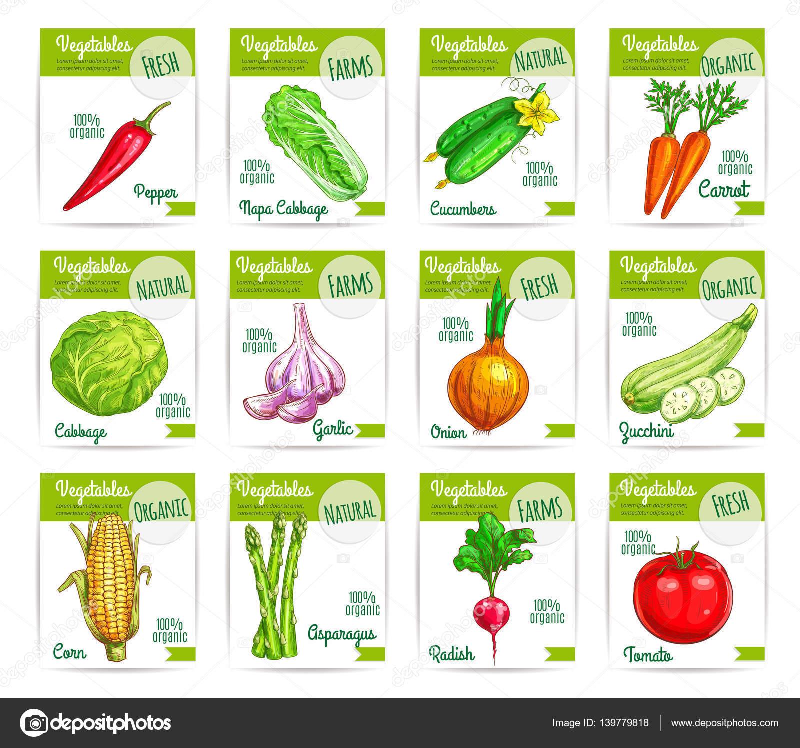 Etiket: sebze yemekleri