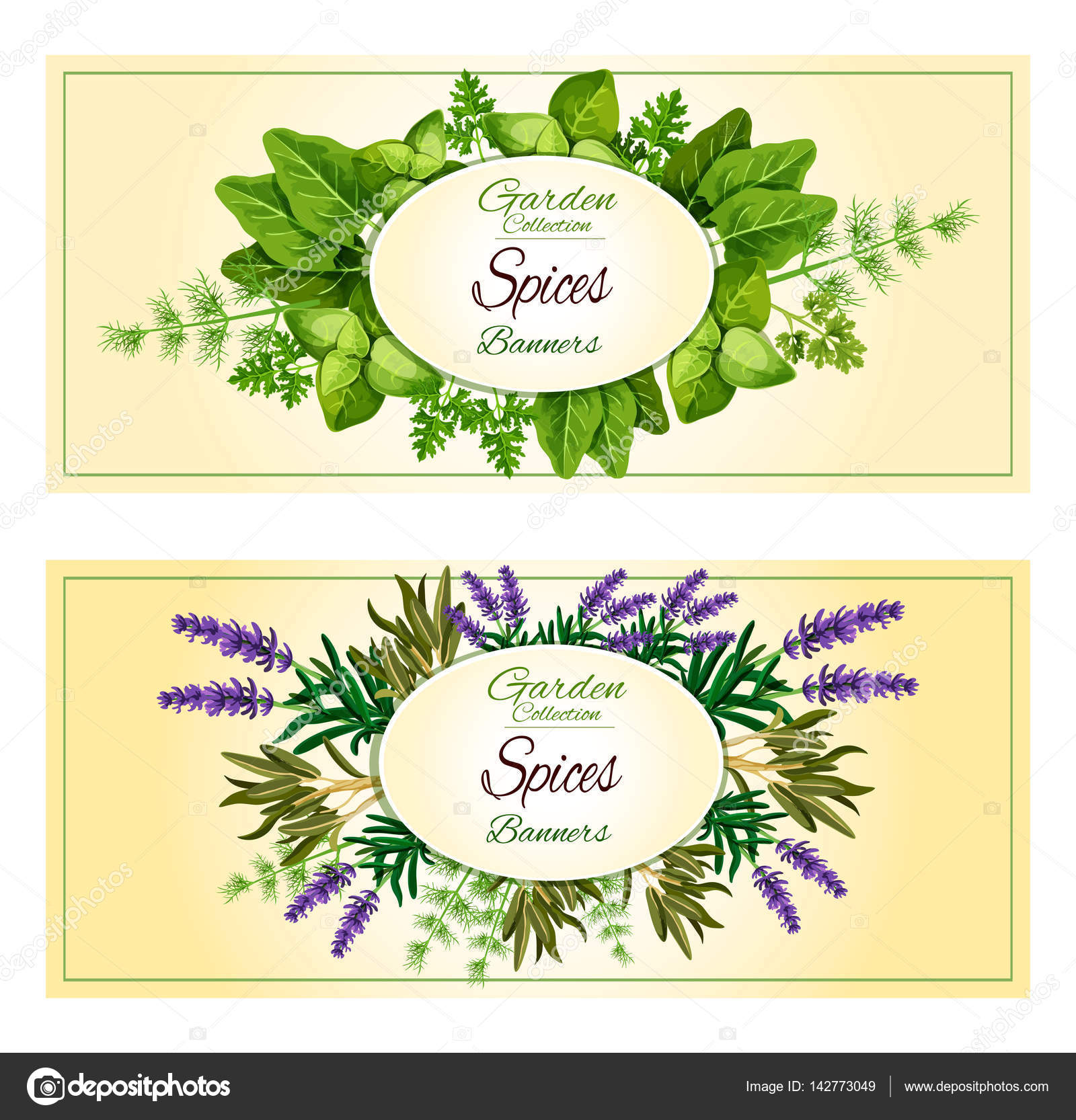 Herbal Spices Herbs Vector Banners Set Stock Vector C Seamartini 142773049