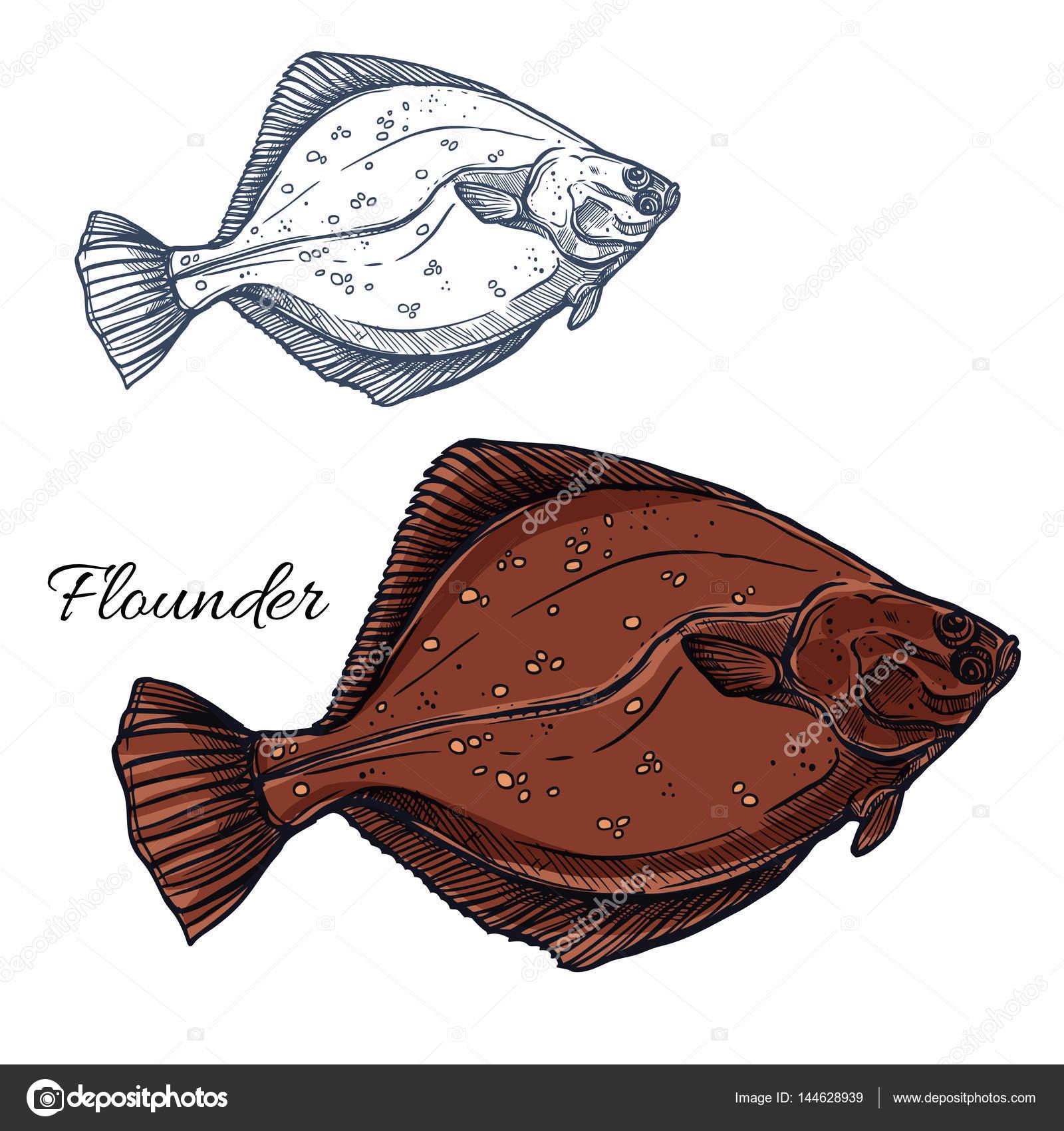 Pesce Rombo Pesce Piatto Oceano Isolato Schizzo Vettoriali Stock