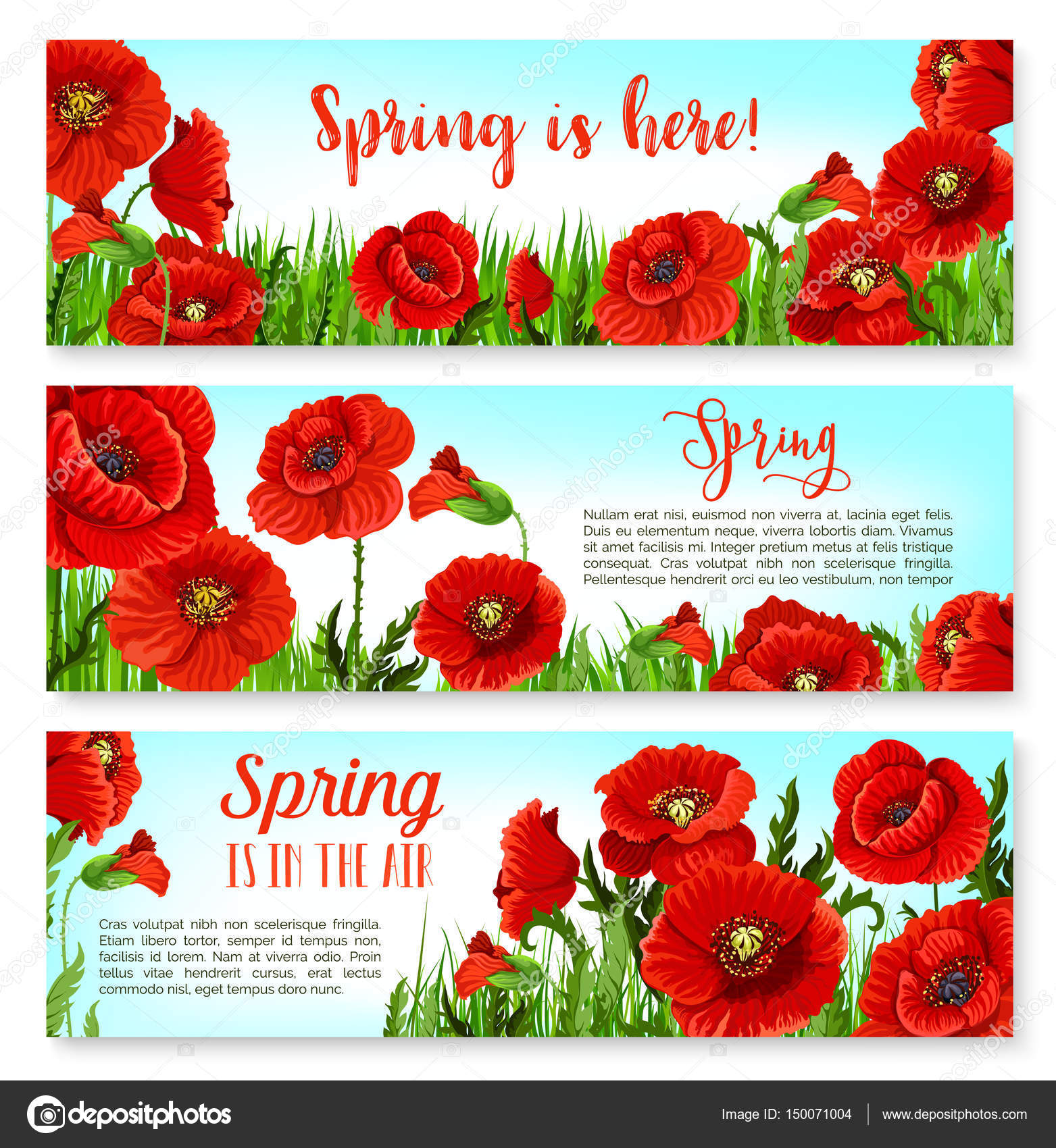 Vector spring time flowers on greeting banners set stock vector spring holiday banners design with blooming poppy flowers and flourish cherry blossom of orchid petals on green grass meadow vector set of springtime mightylinksfo