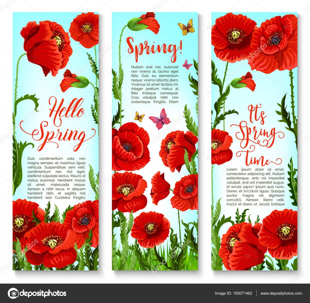 Vector banners of spring poppy flowers and quotes stock vector vector banners of spring poppy flowers and quotes stock vector mightylinksfo
