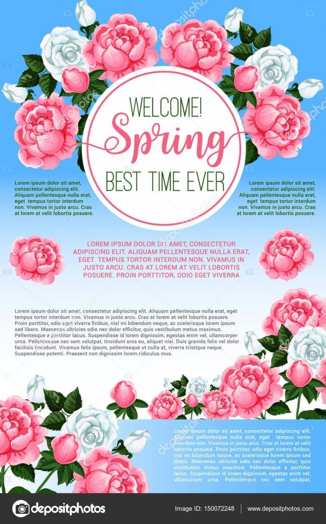Primavera Flores Rosas Saudação Modelo De Cartaz Vetores