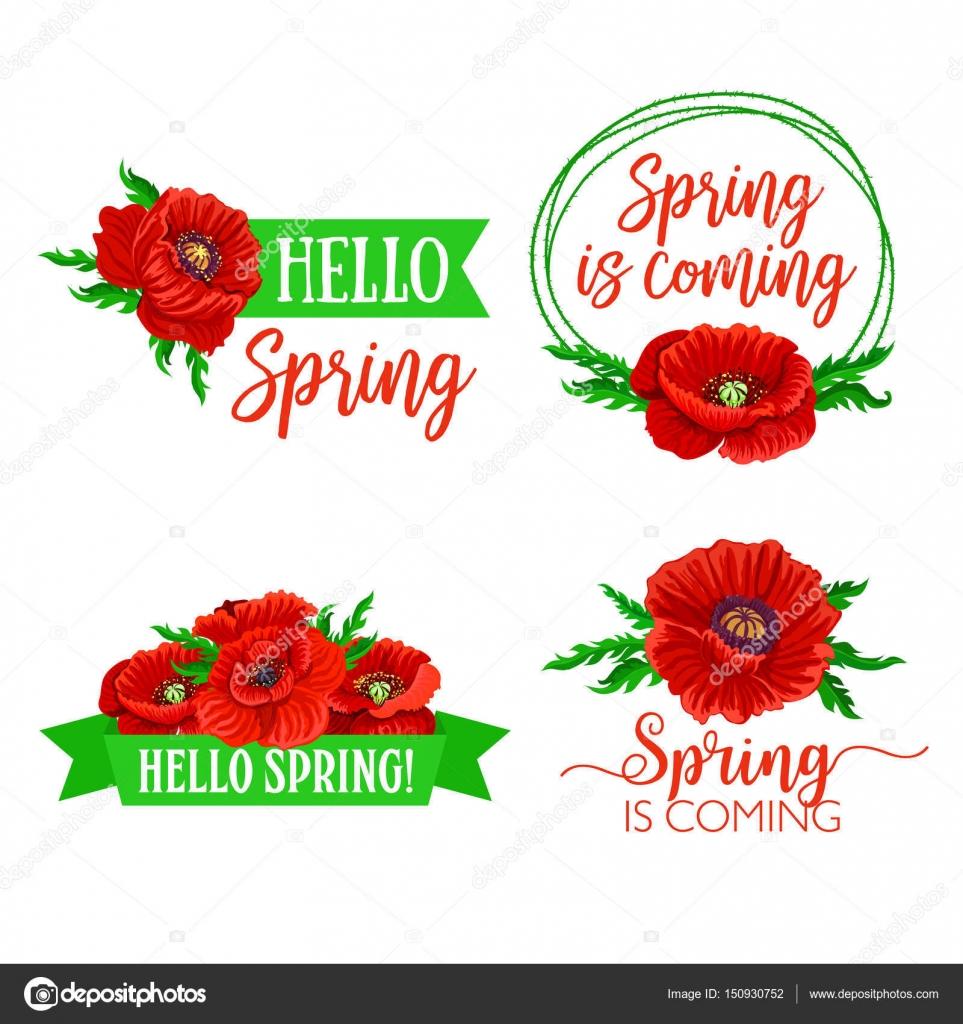 Vektor Frühling Blumen und Blumensträuße zitiert — Stockvektor ...