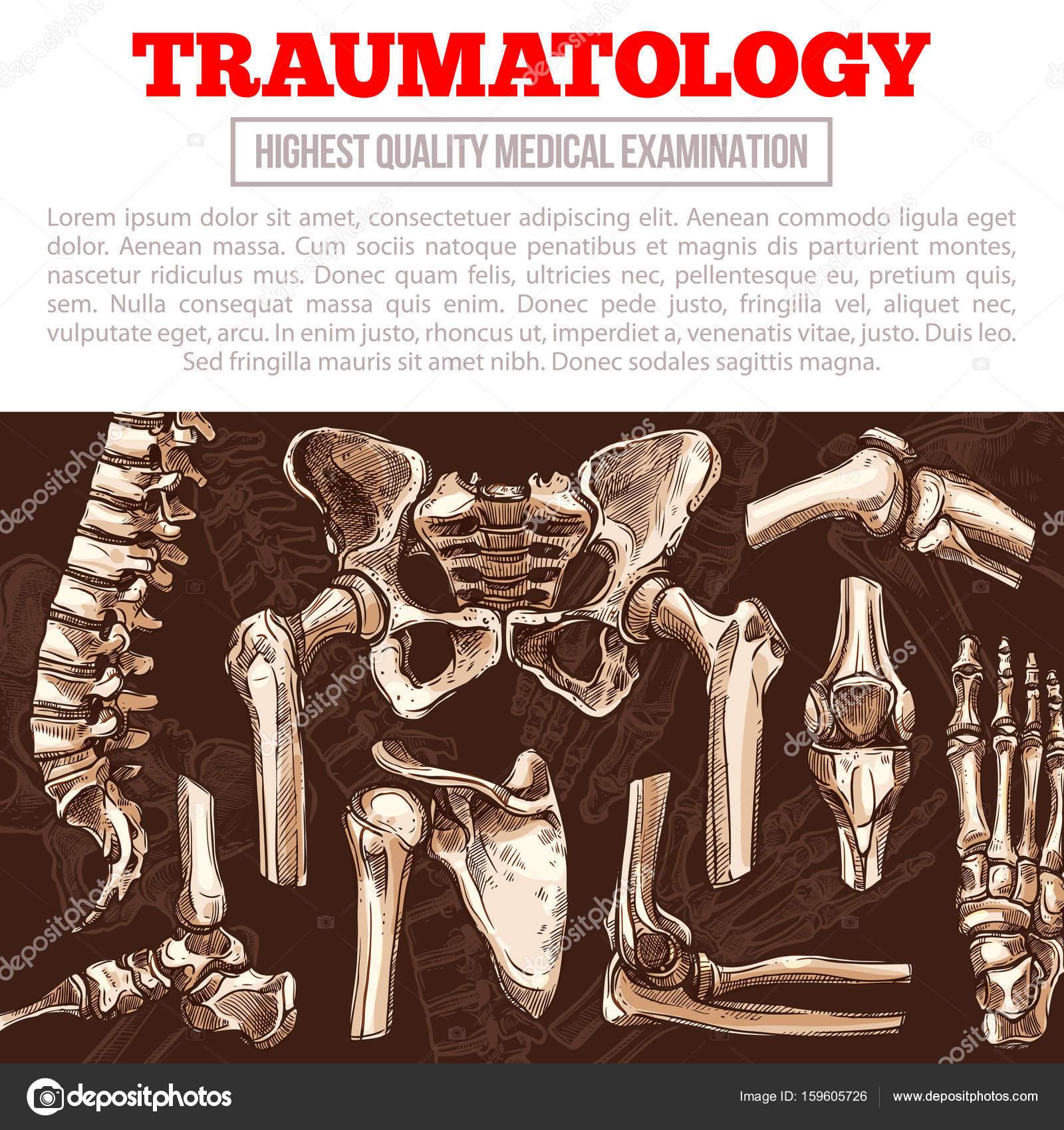 Gelenke, Knochen und Muskeln im Alter