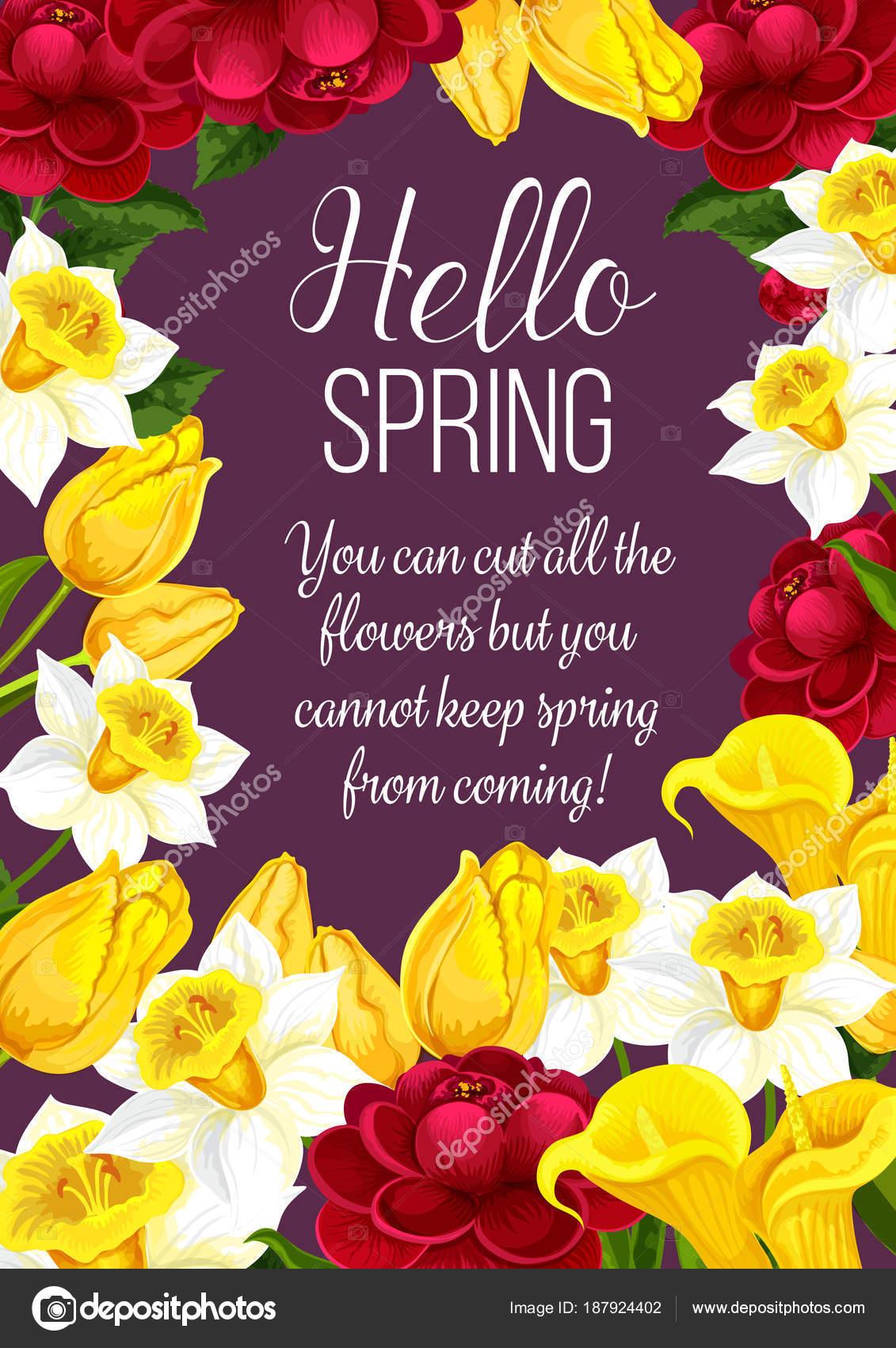 Hello Spring Festive Banner With Springtime Flower Stock Vector