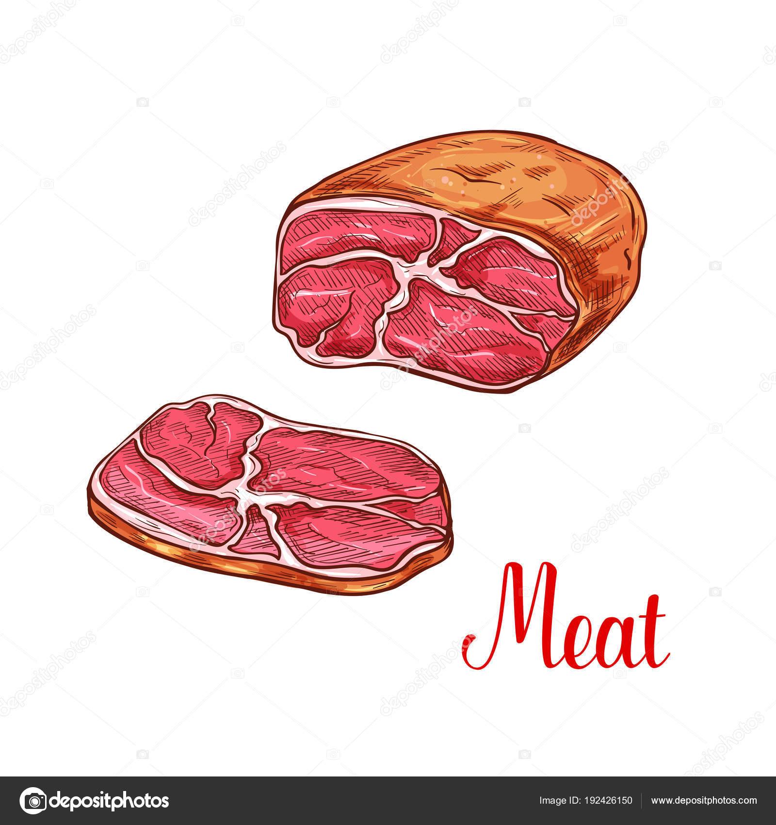 Fleisch-Bruststück skizzieren mit Scheibe Rindfleisch oder ...