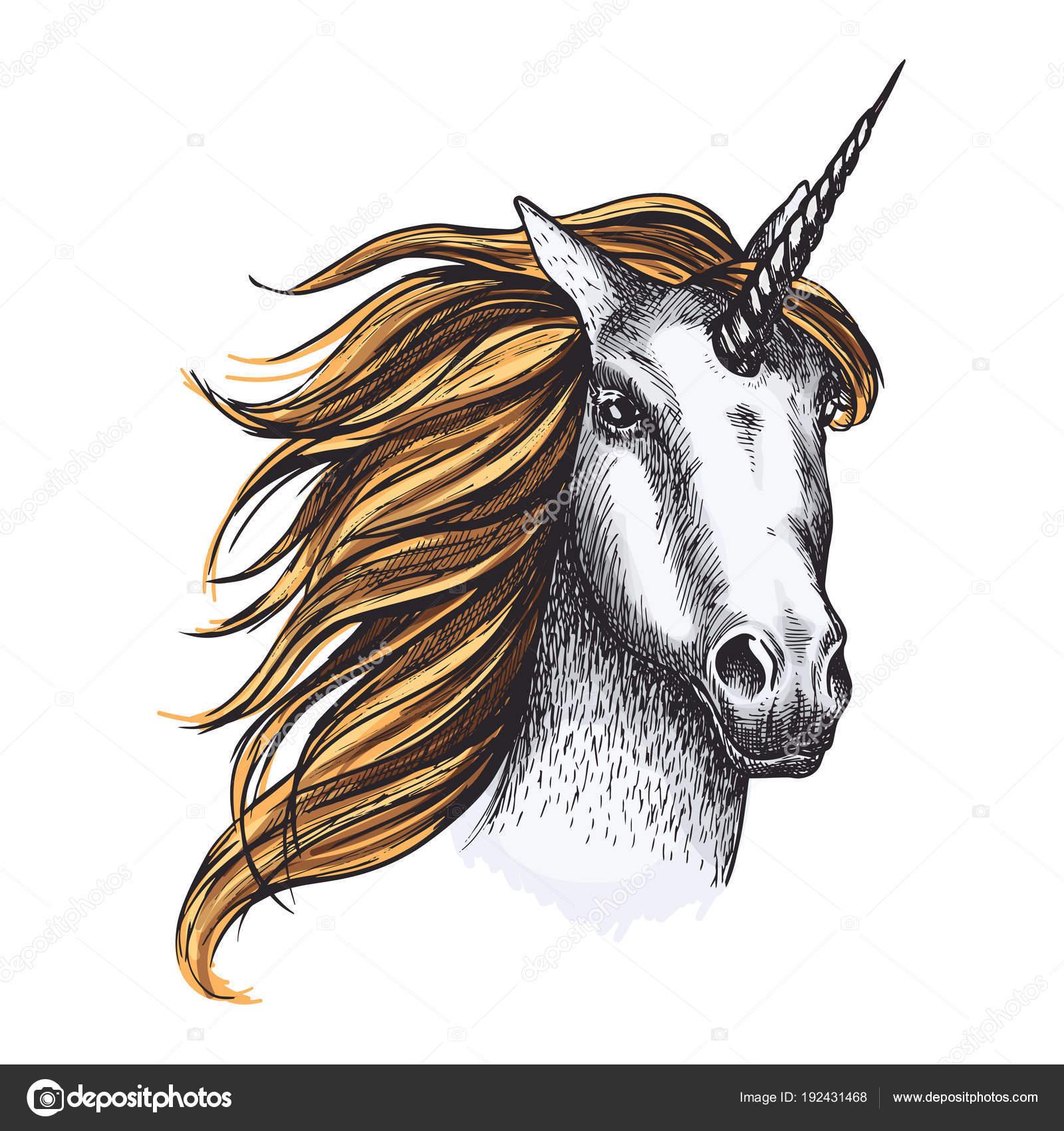 Einhorn Pferd Vektor Skizze Märchen Tier — Stockvektor © Seamartini ...