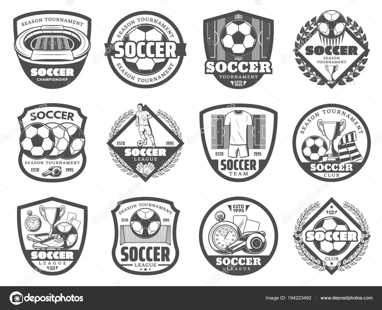 Insignia de escudo heráldico de la Liga del balompié o