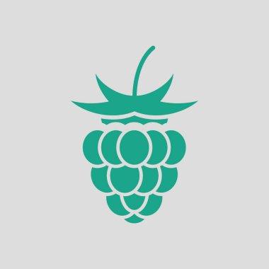 Raspberry icon illustration.