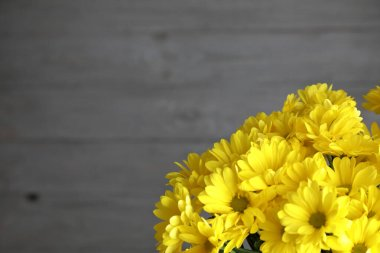 A bouquet of bright yellow flowers . beautiful flowers on a dark gray plank background, in the corner of the frame . Copy space .