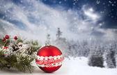 zimní pozadí s vánoční ozdoby