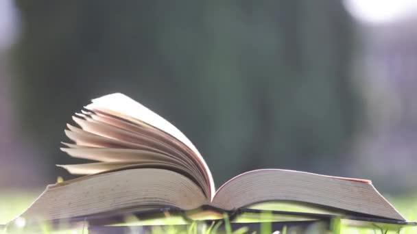 Vítr otáčení staré knihy stránky na zeleném pozadí