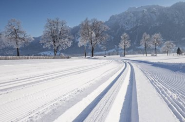 Cross-country skiing path during sunny winter day.