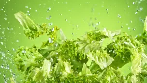 Super Slow Motion Shot of Flying Fresh Zelenina při 1000fps.