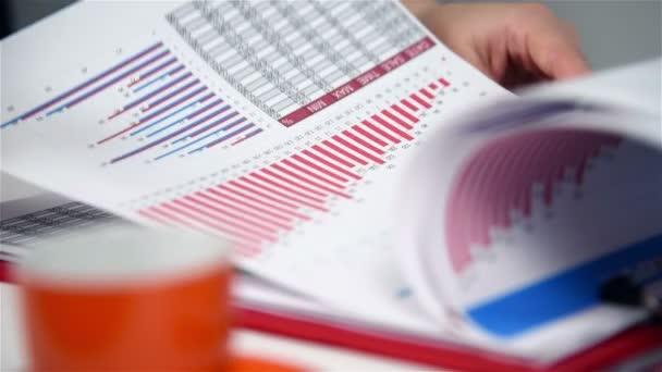 Accountant Woman Checking Budget. Close Up