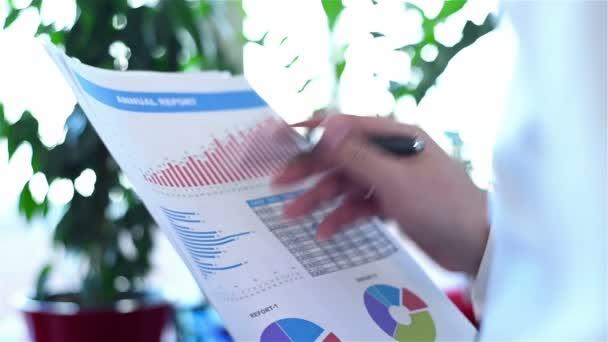 Obchodník, analýza příjmů grafy