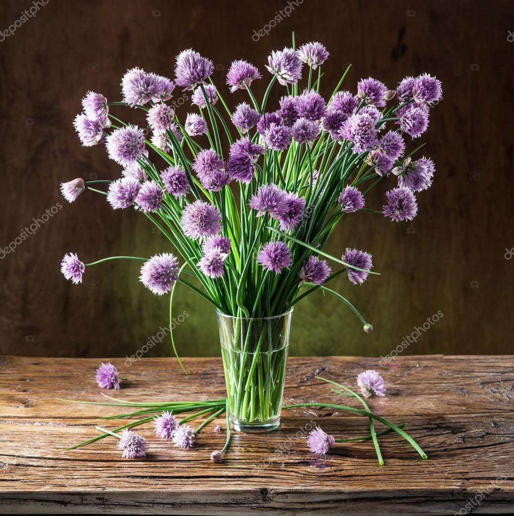 Bouquet of onion chives flowers in the vase on the wooden tabl bouquet of onion chives flowers in the vase on the wooden tabl stock reviewsmspy