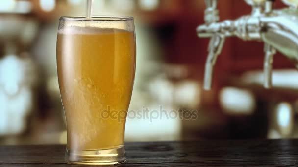 Pivo je lití shora do skla. 4k video.