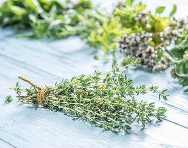 Fresh herbs on the wooden table.