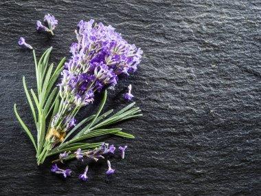 Bunch of lavandula or lavender flowers on graphite board.