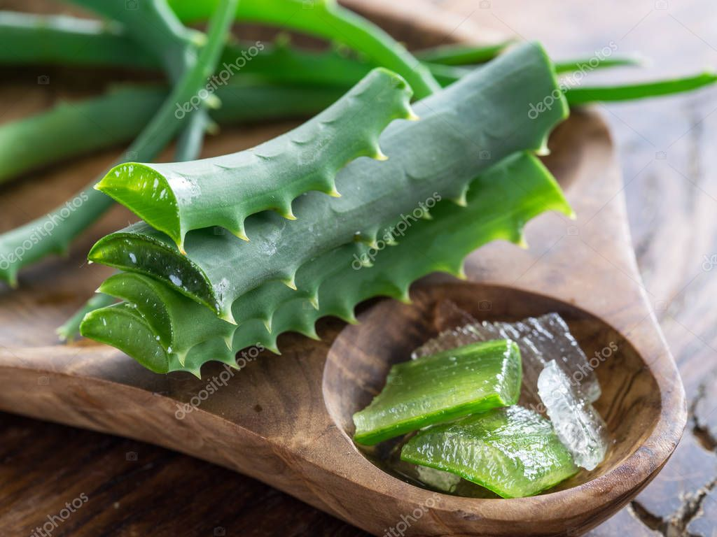 Fresh aloe vera leaves close up on the wooden tray.