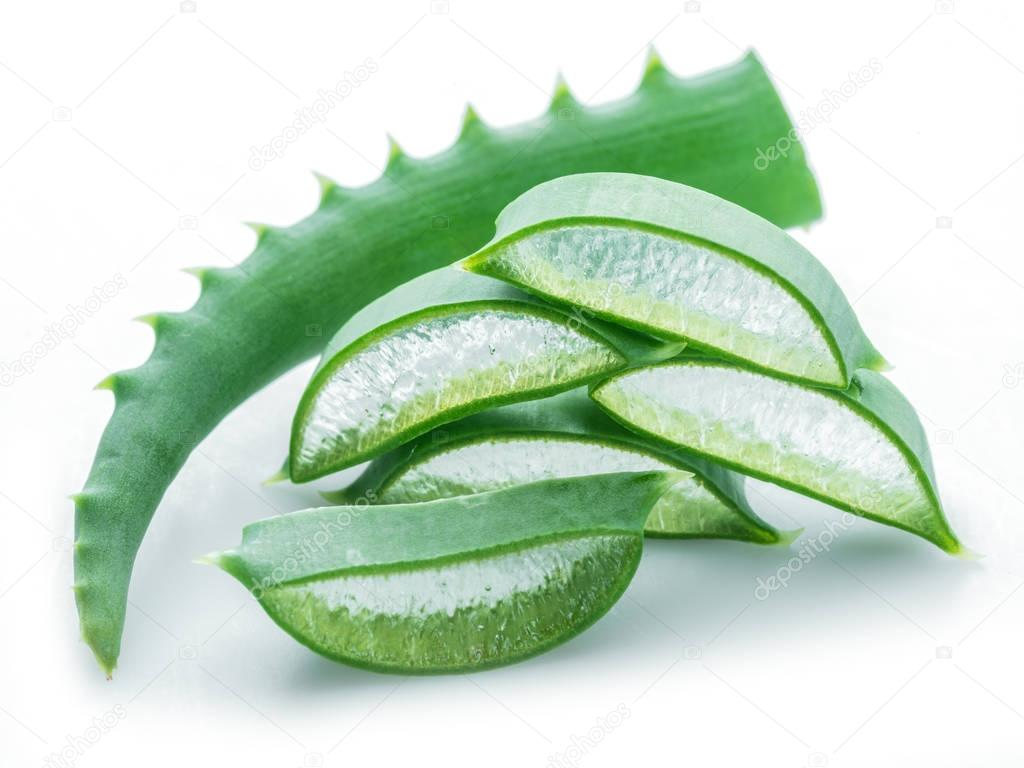 Aloe or Aloe vera fresh leaves and slices on white background.