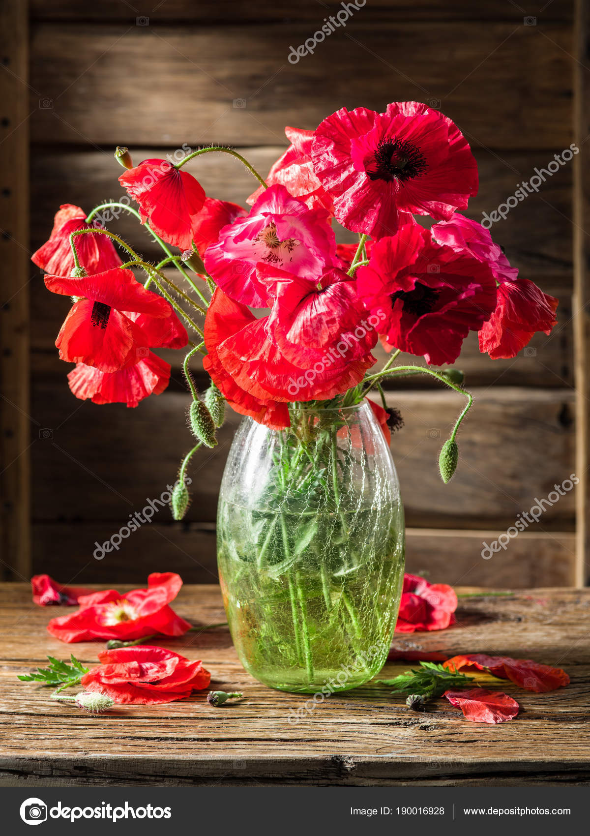 Bouquet of poppy flowers in the vase on the wooden table. — Stock ...