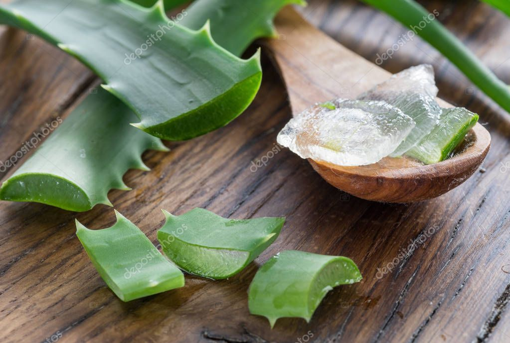 Fresh aloe leaves and aloe gel in the wooden spoon on the table.