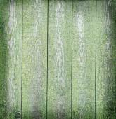 Fotografie ve věku zelené dřevěné pozadí
