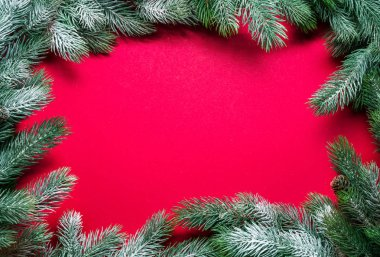 Red New Year or Christmas background with snowy fir branch arran