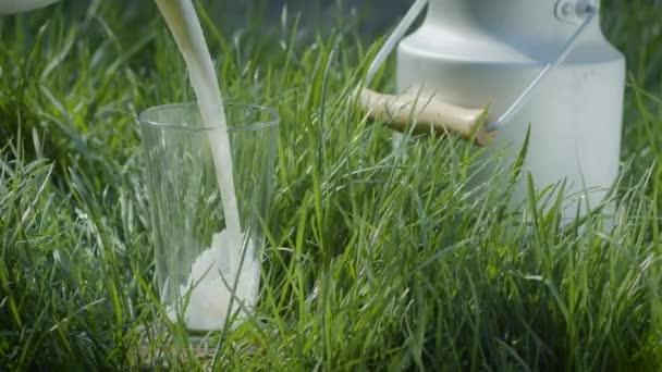 Mléko se nalévá do sklenice stojící v zelené trávě. Farma koncepce mléčných organických potravin a nápojů.