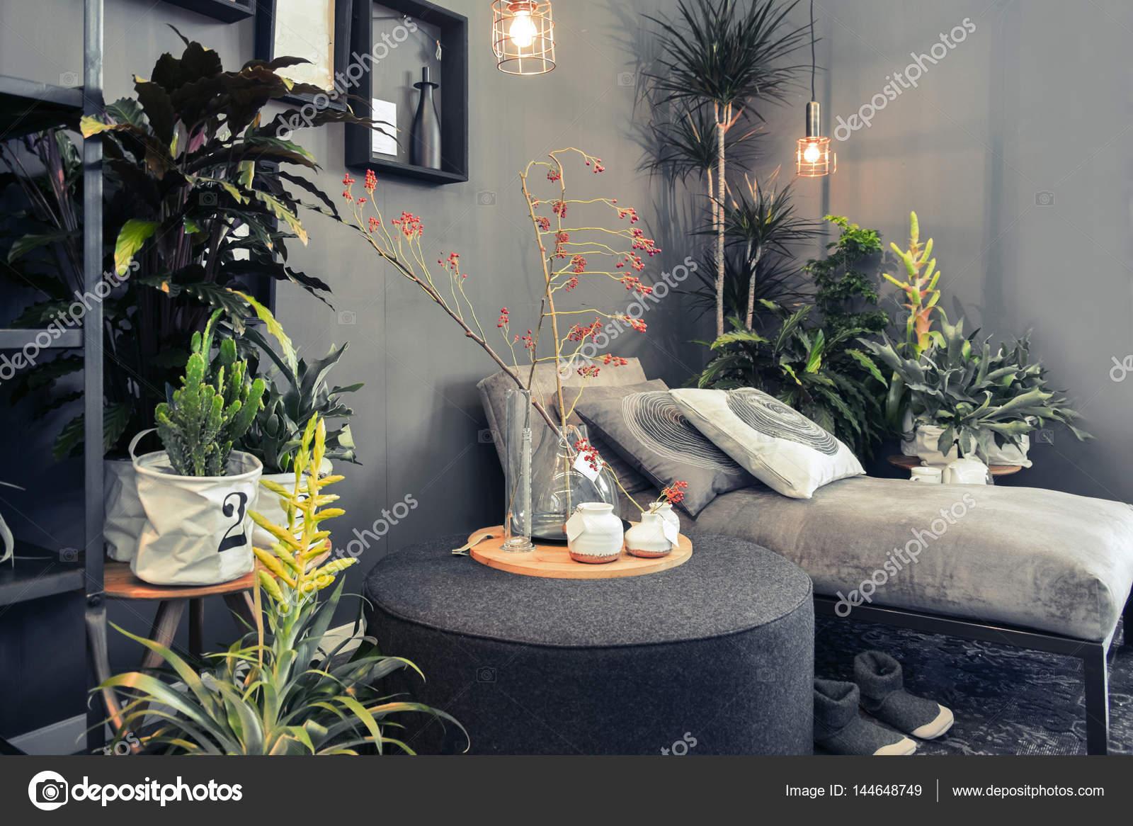 Canape De Salon En Terrasse Maison Photographie Araraadt C 144648749