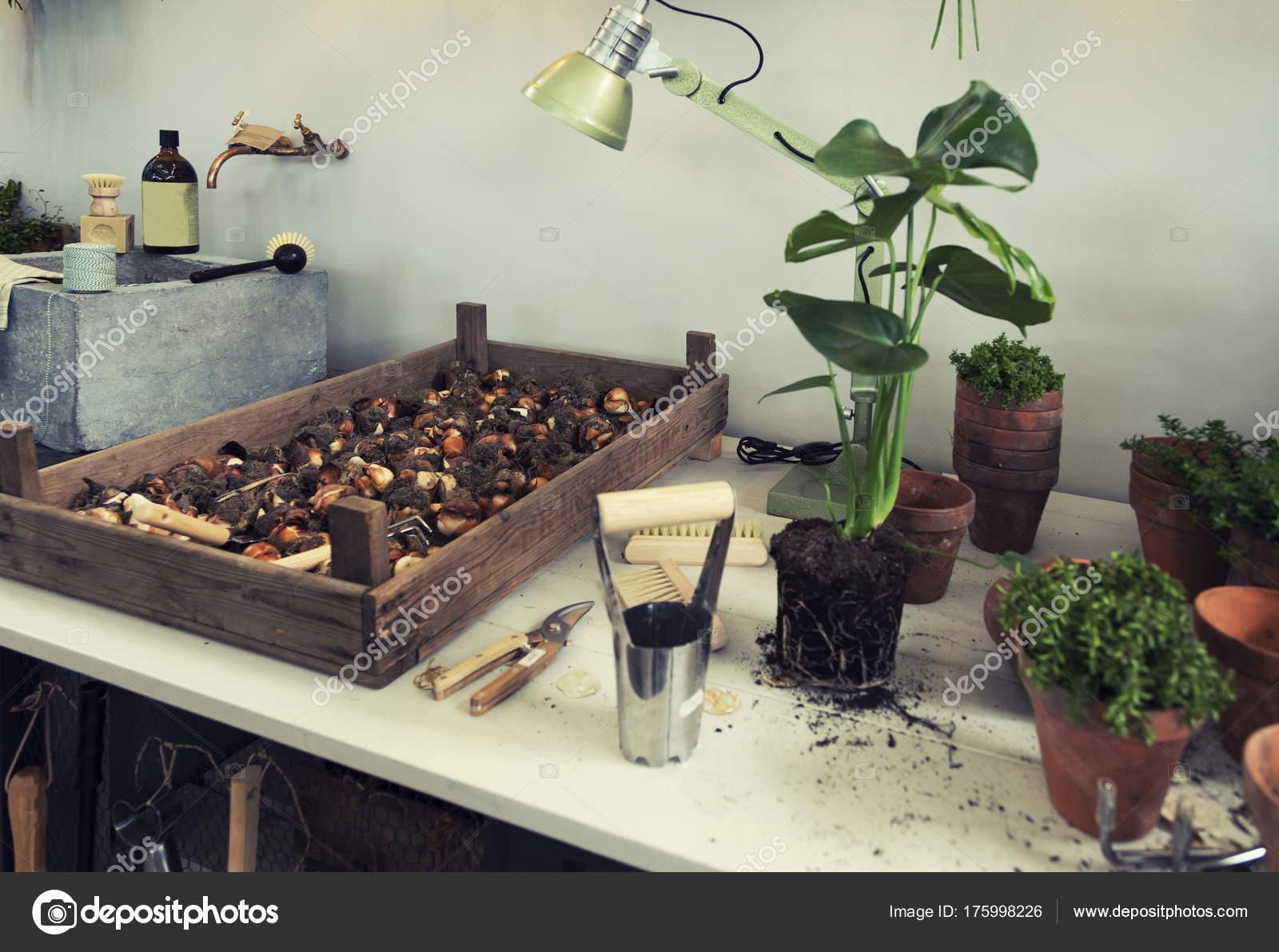 espacio de jardín en terraza de casa — Foto de stock © araraadt ...