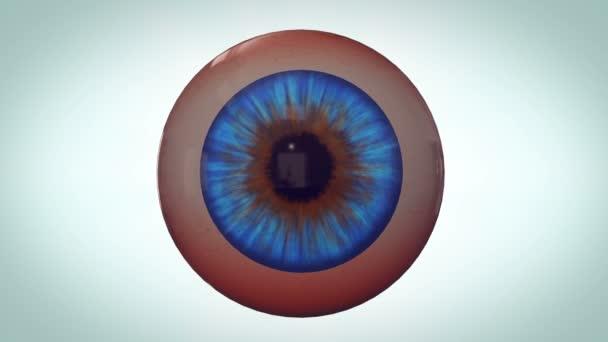 oka s červenými žilkami